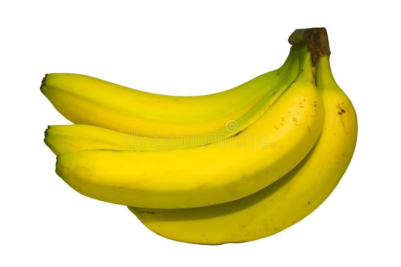 Grupo da banana fotografia de stock