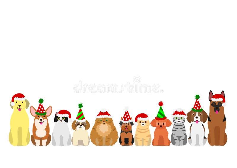 Grupo da beira dos gatos e dos cães ilustração do vetor