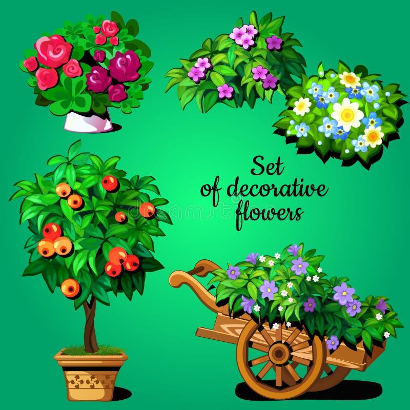 Grupo da casa de plantas de florescência decorativas ilustração stock