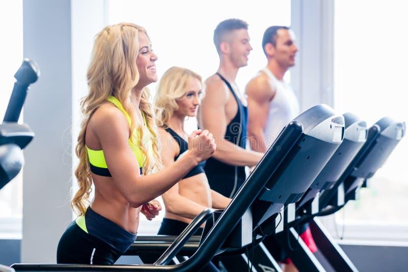 Grupo da escada rolante que exercita no gym da aptidão foto de stock