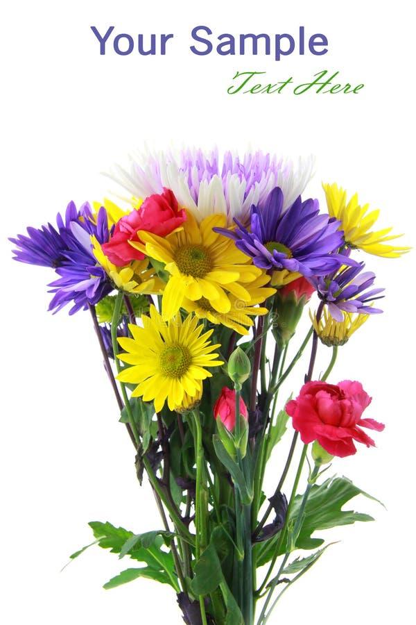 Grupo da flor imagens de stock