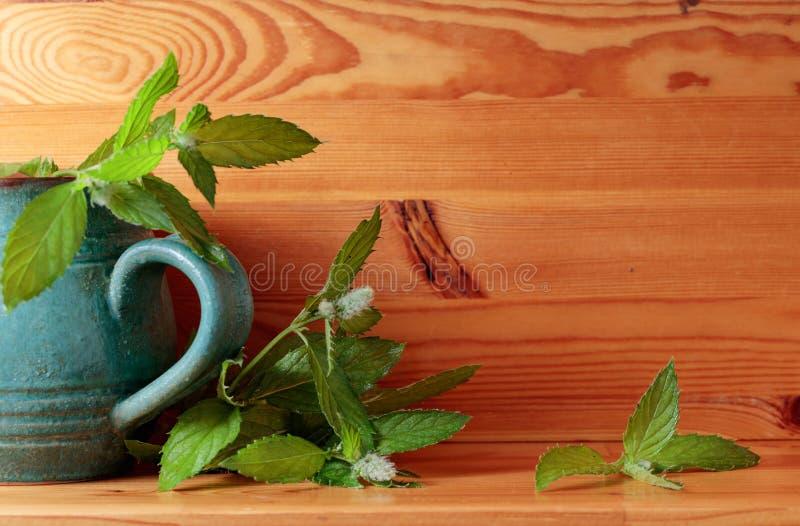 Grupo da folha verde fresca da hortelã foto de stock