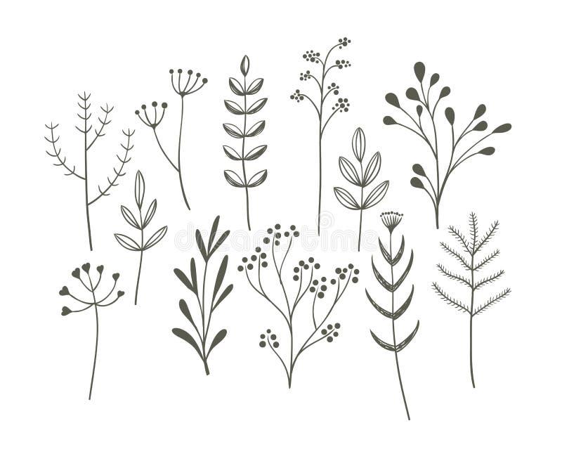 Grupo da grama da garatuja ilustração stock