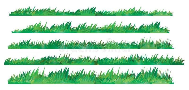 Grupo da grama verde, no fundo branco, ilustração do vetor imagem de stock