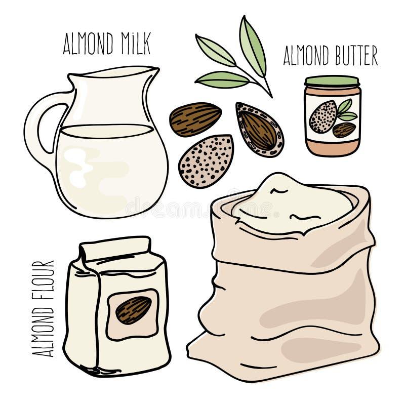 Grupo da ilustração do vetor da dieta de Paleo do vegetariano do ALIMENTO da AMÊNDOA ilustração royalty free