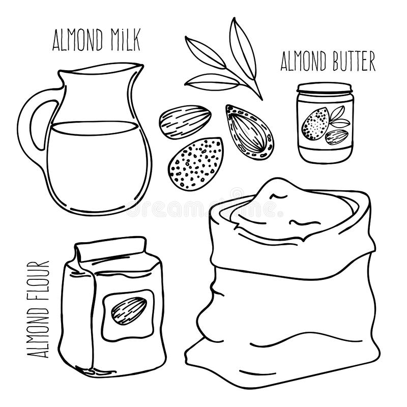 Grupo da ilustração do vetor da dieta de Paleo do vegetariano da REFEIÇÃO da AMÊNDOA ilustração do vetor