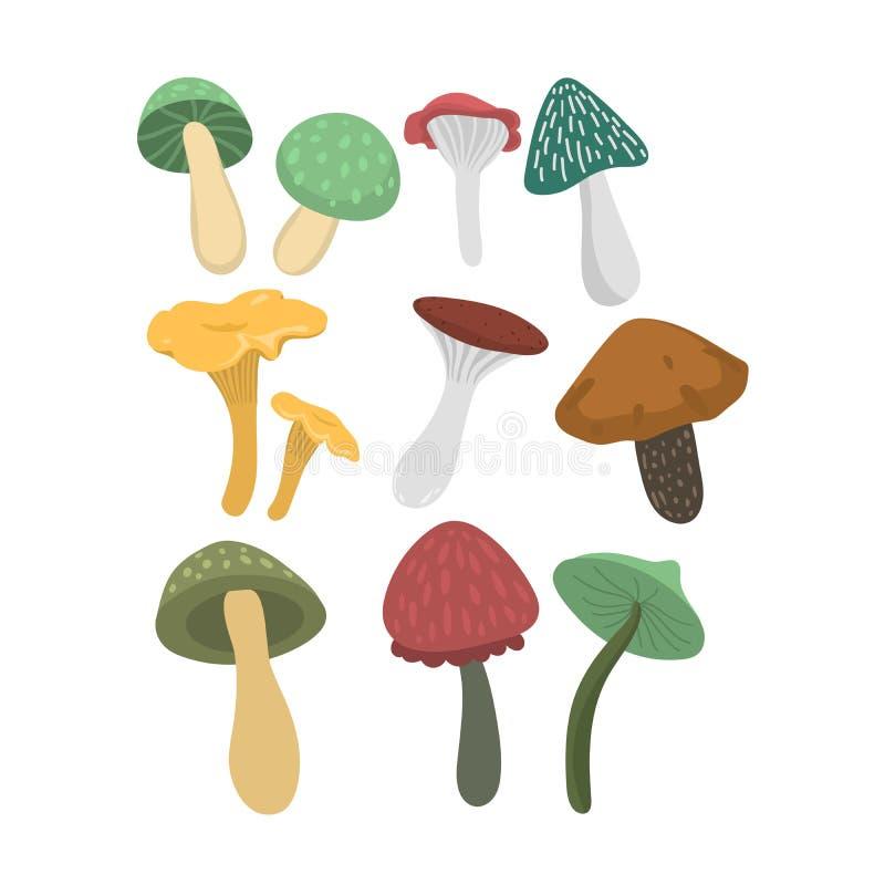 Download Grupo Da Ilustração Do Vetor Dos Cogumelos Ilustração do Vetor - Ilustração de alaranjado, folha: 80100027