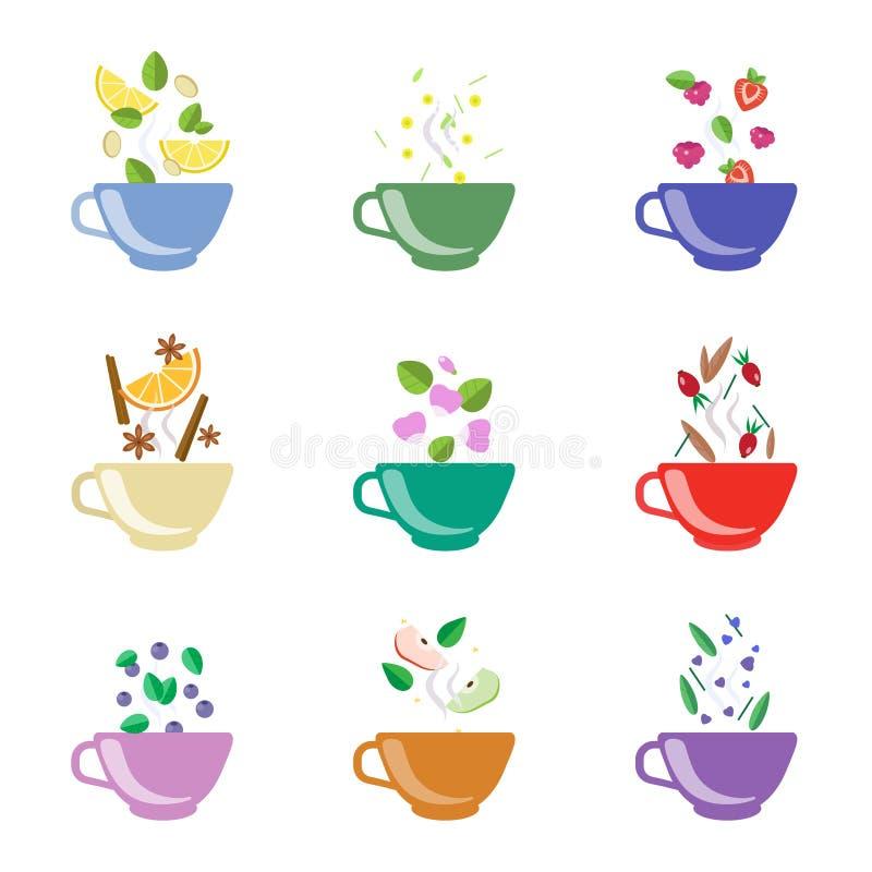Grupo da ilustração do vetor dos sabores do chá ilustração stock