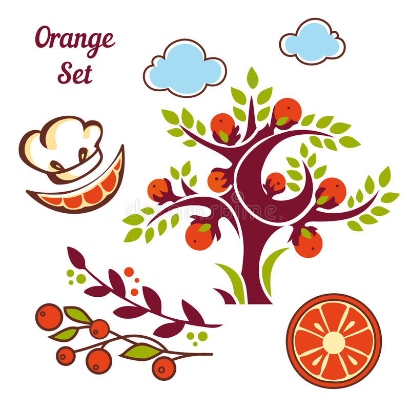 Grupo da laranja ilustração royalty free
