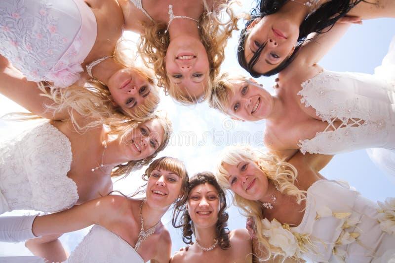 Grupo da noiva oito feliz junto ao ar livre fotografia de stock