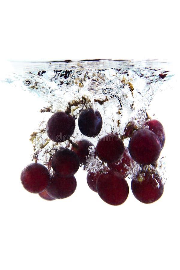 Grupo da queda das uvas imagens de stock