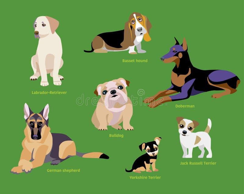 Grupo da raça dos cães imagens de stock