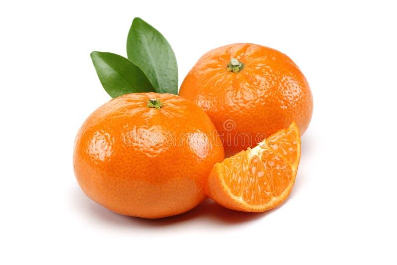 Grupo da tangerina imagem de stock royalty free