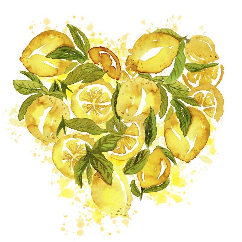 Grupo dado forma coração do limão ilustração stock
