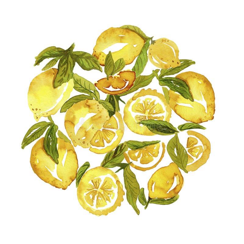 Grupo dado forma redondo do limão ilustração do vetor