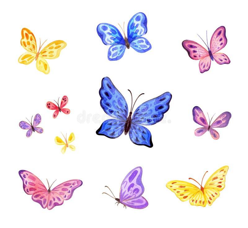 Grupo das borboletas do ute do ¡ de Ð Ilustra??es pintados ? m?o da aquarela ilustração stock