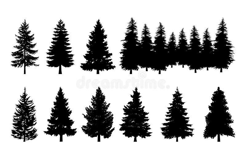 Grupo das coleções da silhueta do pinho das árvores ilustração stock
