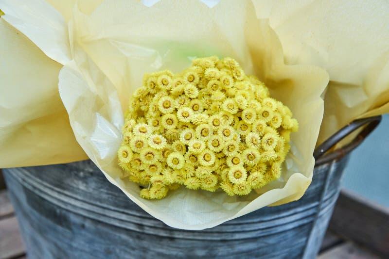 Grupo das flores amarelas do Helichrysum envolvidas no papel do ofício na cubeta do metal foto de stock royalty free