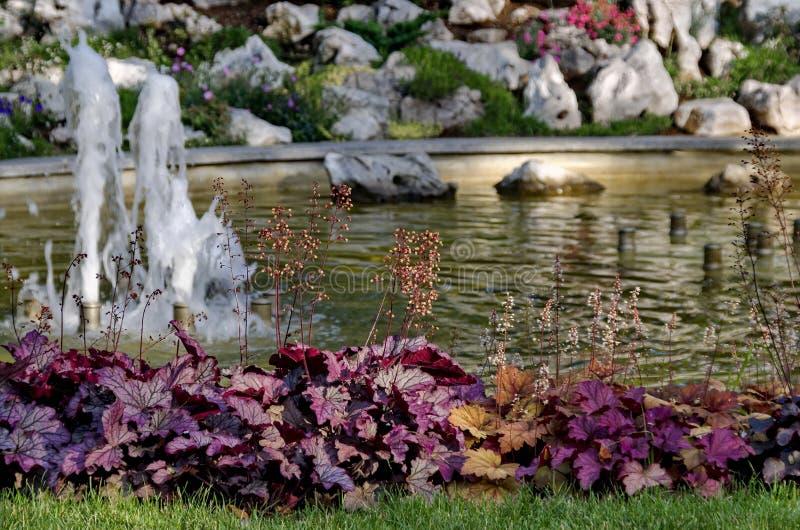 Grupo das fontes de água pequenas que fluem no jardim ornamental dianteiro da beleza imagem de stock