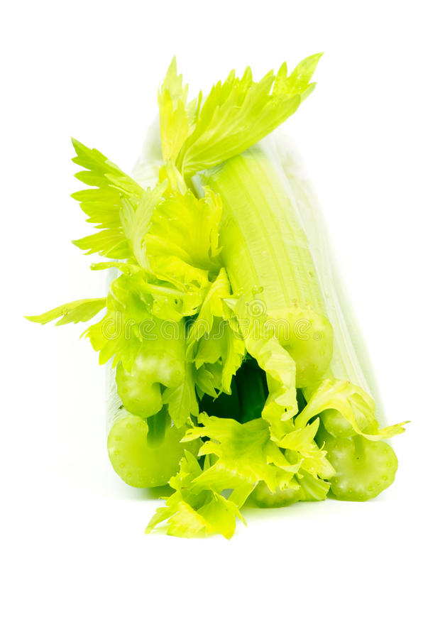 Download Aipo foto de stock. Imagem de aipo, grupo, comer, vegetariano - 29843036