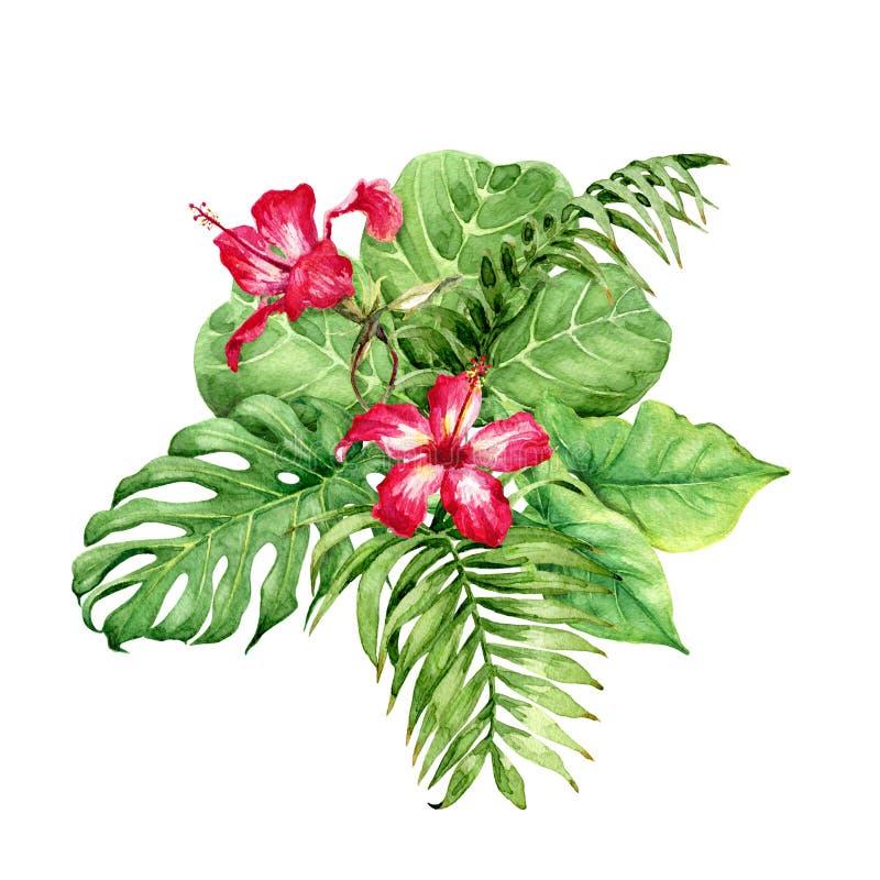 Grupo das plantas tropicais com hibiscus ilustração stock