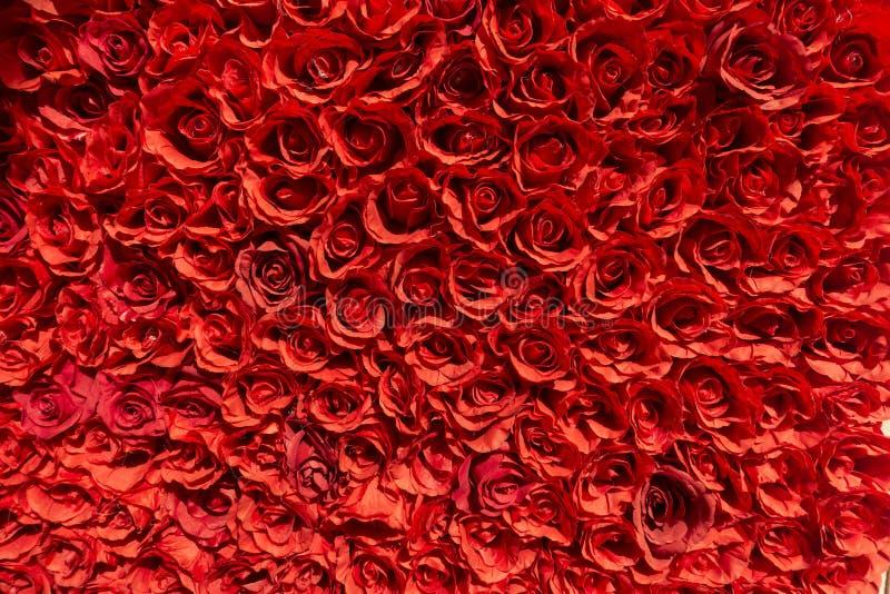 Grupo das rosas que fazem uma parede imagens de stock