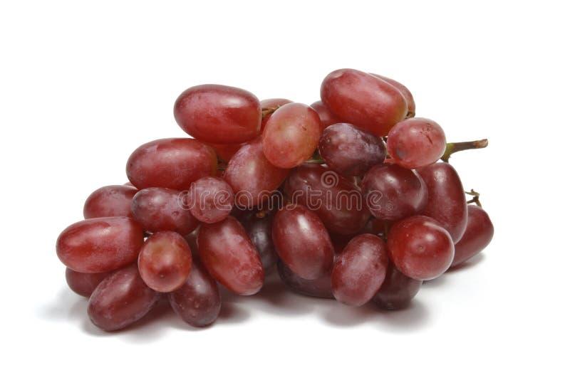 Grupo das uvas vermelhas isoladas fotos de stock