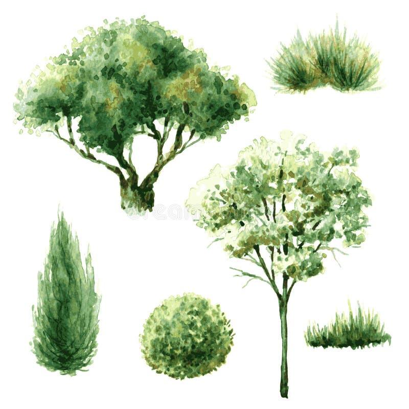 Grupo de árvores e de arbustos verdes ilustração stock