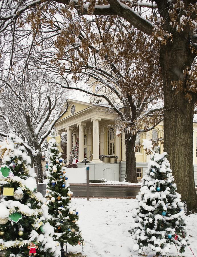 Grupo de árvores de Natal na frente do tribunal de Fauquier County em Warrenton Virgínia fotos de stock
