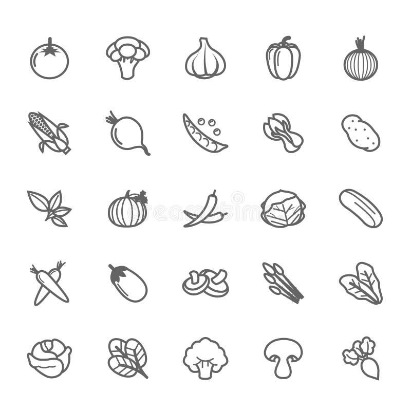 Grupo de ícone do vegetal do curso do esboço ilustração royalty free