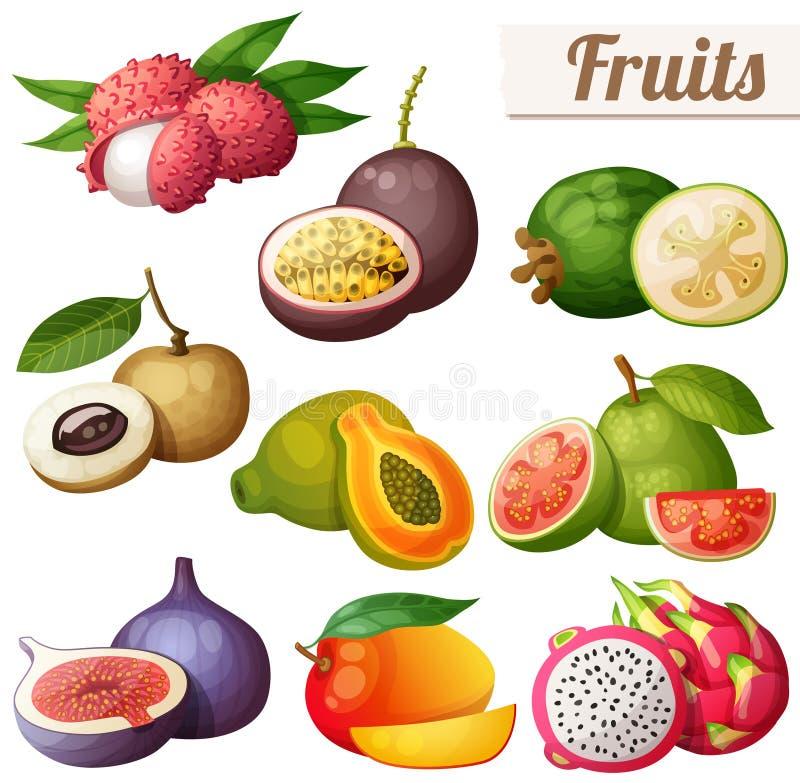 Grupo de ícones do alimento dos desenhos animados Frutos exóticos isolados no fundo branco ilustração do vetor
