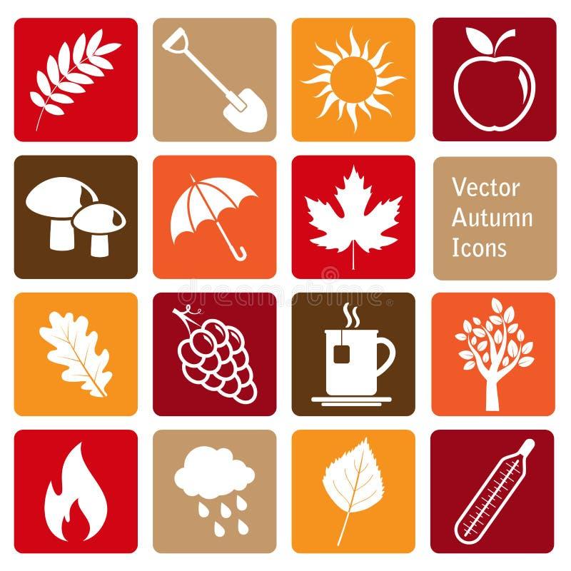 Grupo de ícones do outono do vetor ilustração do vetor