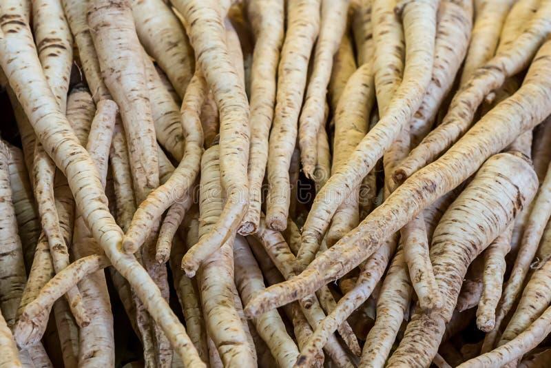 Grupo de abundância rural do fundo do teste padrão longo do fruto da pastinaga da bandeja do fruto de vegetais de raiz no fazende fotografia de stock