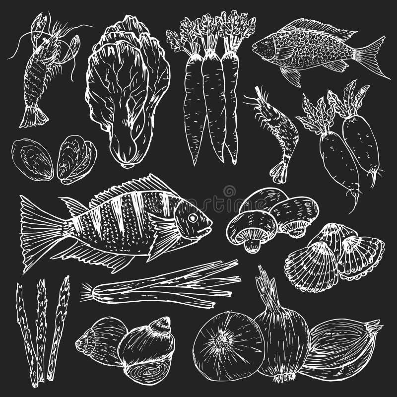 Grupo de alimento biol?gico tirado m?o Ervas, especiarias e marisco orgânicos Os desenhos saudáveis do alimento ajustaram element ilustração royalty free
