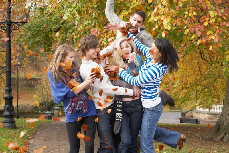 Grupo de amigos adolescentes que lanzan las hojas foto de archivo libre de regalías