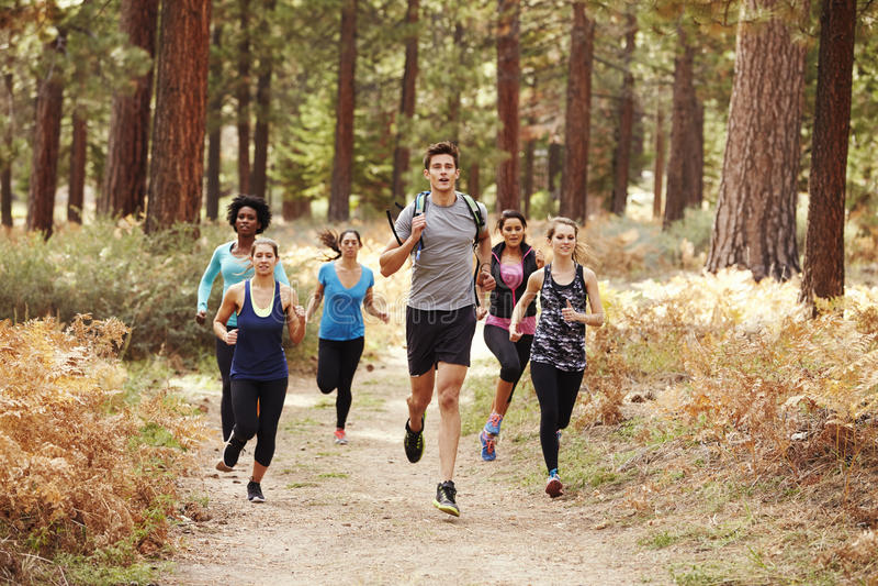 Grupo de amigos adultos jovenes que corren en un bosque imágenes de archivo libres de regalías