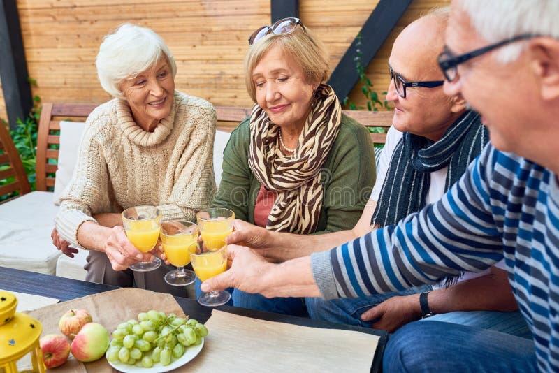 Grupo de amigos aposentados que brindam no almoço imagem de stock royalty free