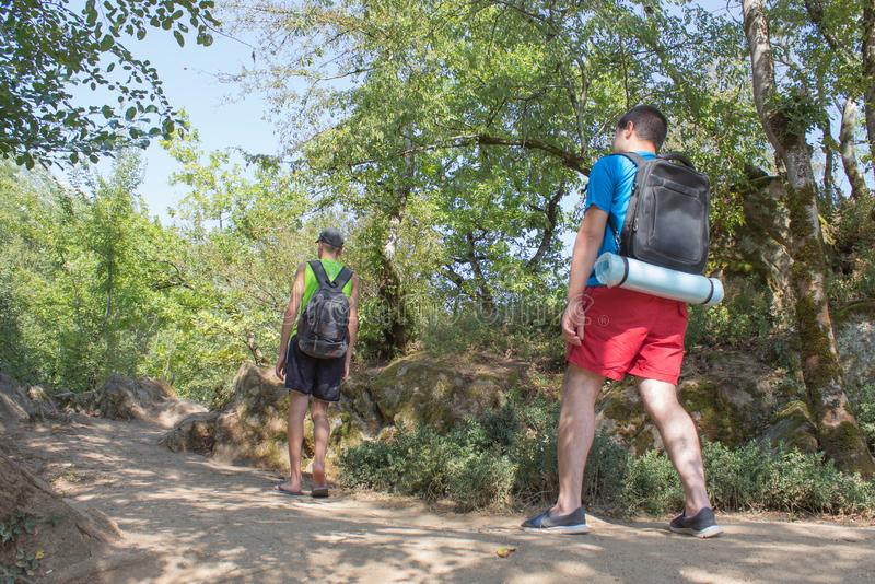 Grupo de amigos con las mochilas que van para arriba la trayectoria en el bosque de la montaña, el concepto de turismo activo eco imagen de archivo