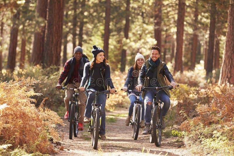 Grupo de amigos en las bicis en vista delantera del bosque imágenes de archivo libres de regalías