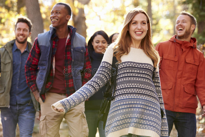 Grupo de amigos felices que caminan junto en un bosque, cierre para arriba foto de archivo libre de regalías