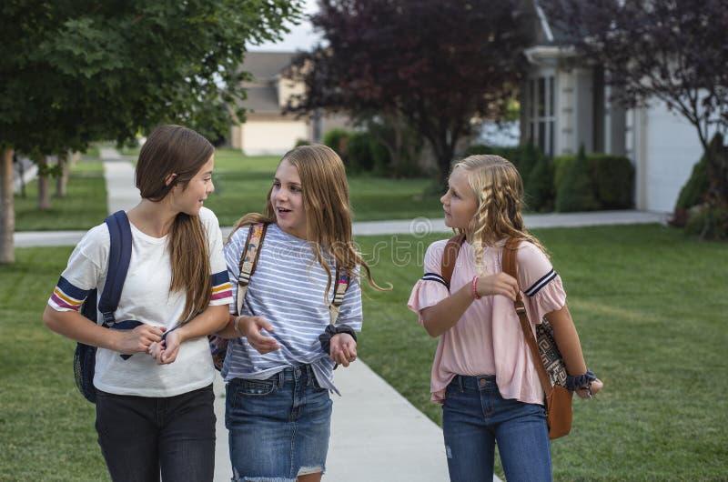 Grupo de amigos jovenes y de estudiantes femeninos que hablan junto como caminan la escuela casera para el día foto de archivo libre de regalías