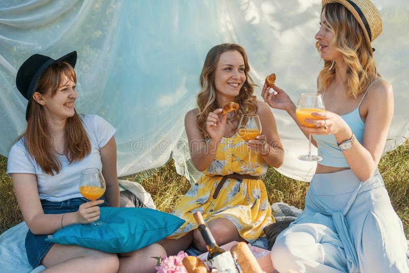 Grupo de amigos de meninas que fazem o piquenique exterior Alimentam-se foto de stock royalty free