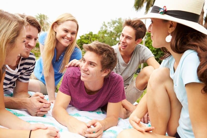 Grupo de amigos novos que têm o piquenique junto imagens de stock royalty free