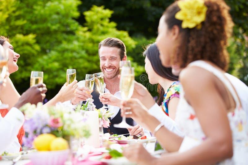Grupo de amigos que apreciam o partido de jantar exterior imagem de stock