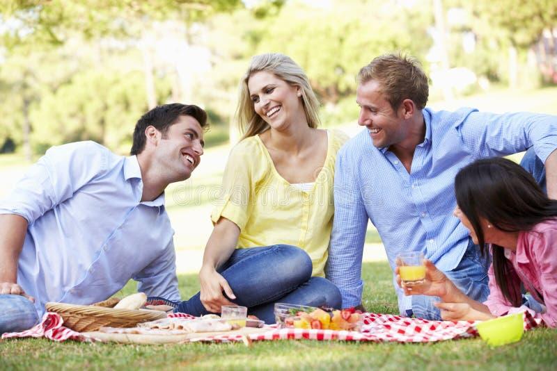 Grupo de amigos que disfrutan de comida campestre junto imagenes de archivo