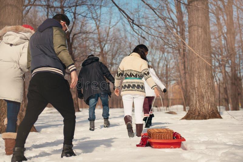 Grupo de amigos que gozan que tira de un trineo en la nieve en invierno foto de archivo libre de regalías