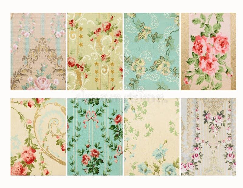 Grupo de amostras chiques florais gastos florais francesas do fundo do walloper do vintage fotografia de stock