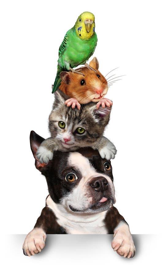 Grupo de animais de estimação ilustração royalty free