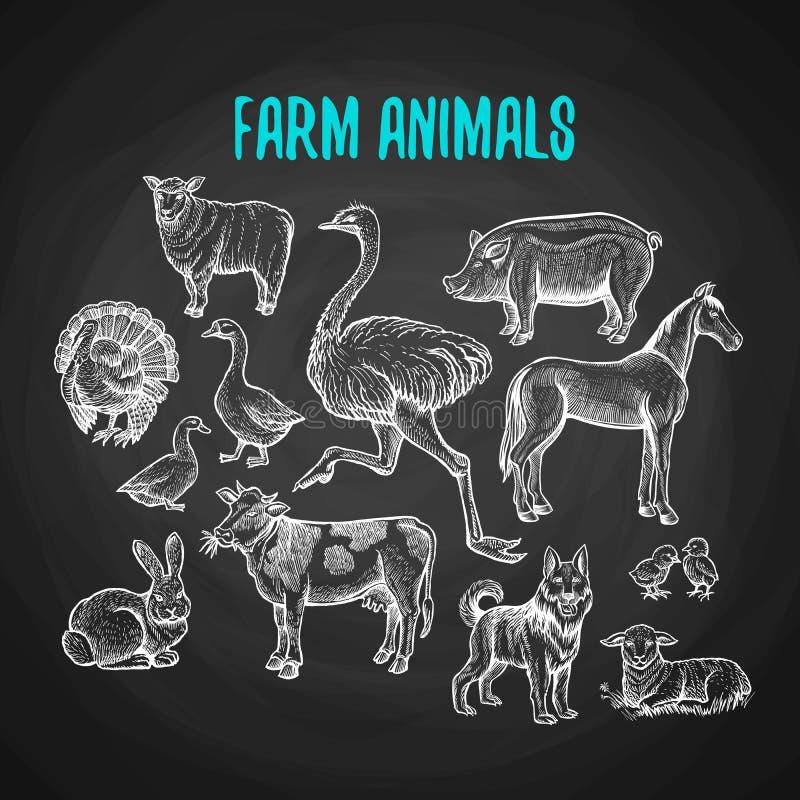 Grupo de animais de exploração agrícola no estilo do giz no quadro-negro ilustração royalty free