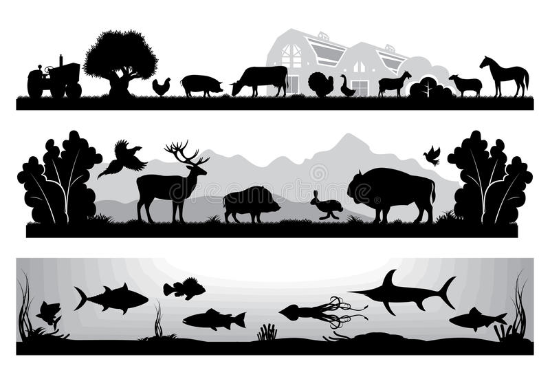 Grupo de animais selvagens preto e branco das paisagens, exploração agrícola, vida marinha ilustração do vetor